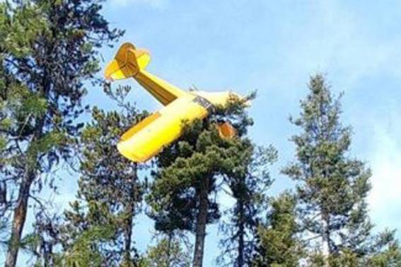 Nach Motorausfall: Auch hier kam der Pilot mit dem Schrecken davon