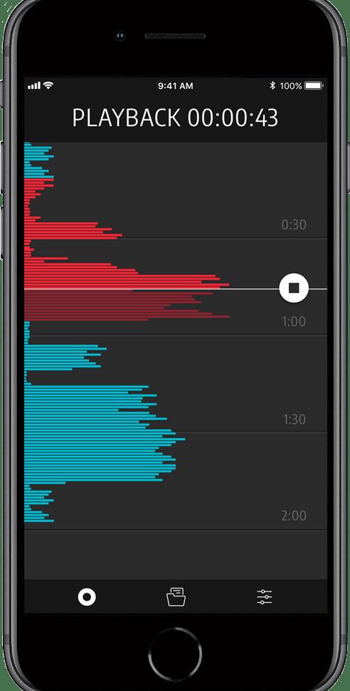 Flightlink-App auf dem iPhone